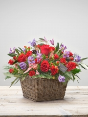 Cosy Crimson Basket Plus
